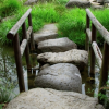 Thumbnail image for Stepping Stones to Peacemaking
