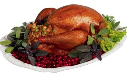 Feast upon Jesus