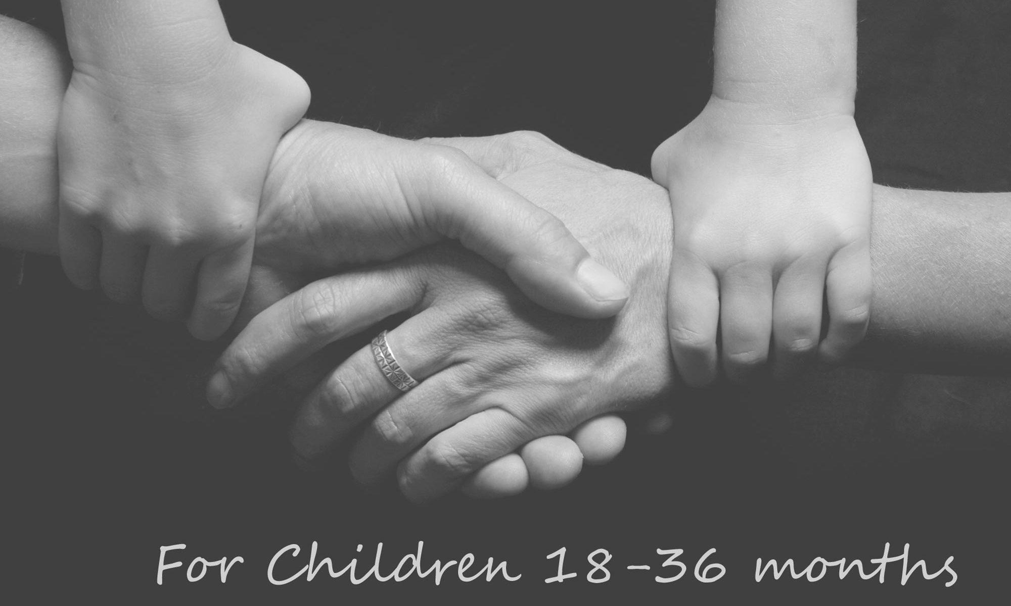 parenting plans for children 18-36 months old